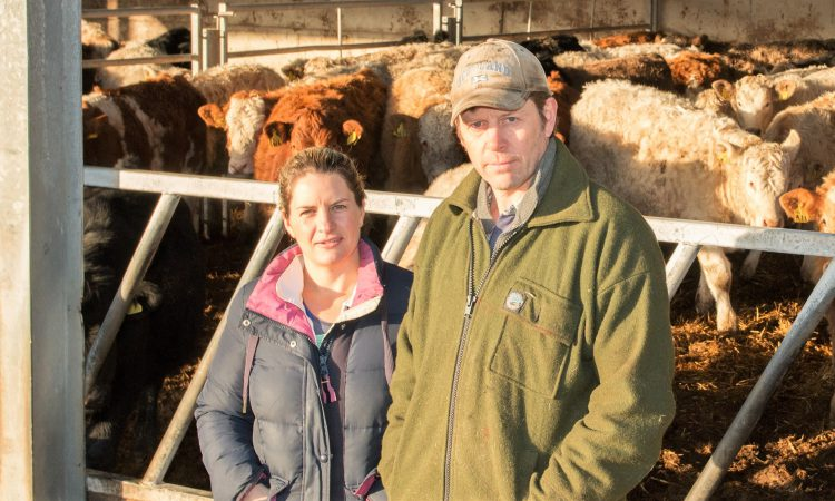 Are you making the best use of your feed over winter?