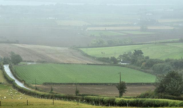 UFU: 'Genuine partnerships needed to tackle ammonia'