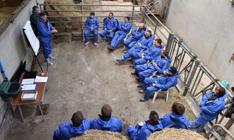 NI farmers offered beef farm study tour