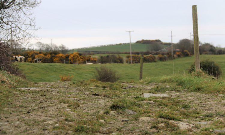 DAERA issues new Environmental Farming Scheme agreements