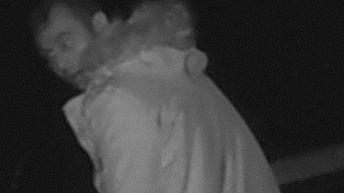 Police release CCTV image of sheep theft suspect