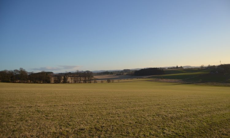 Arable and pasture land for sale in lots on 95.41ac