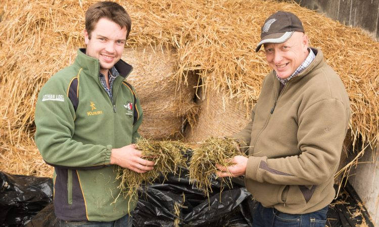 Quality over quantity: Monitor Farm to discuss strategies to improve silage