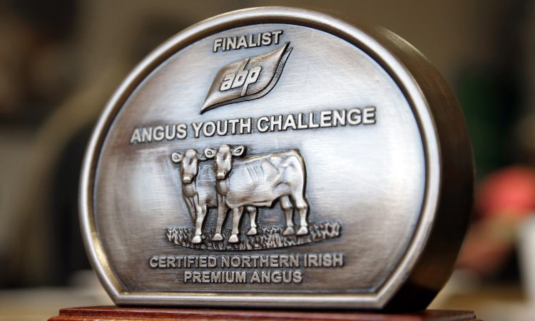 Teens to compete in ABP Angus Young Challenge semi-final