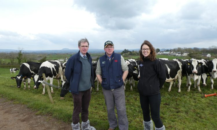 GrassCheck farm walk: Maximising milk from grazed grass with high-yielding cows