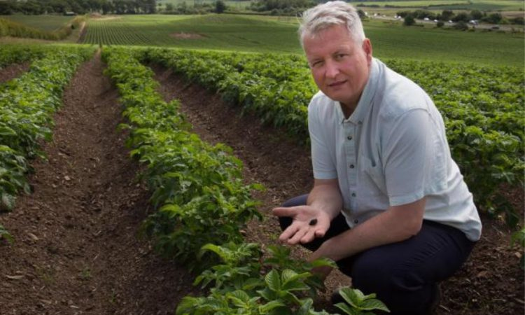 Metaldehyde ban: Alternatives event planned for north-east farmers