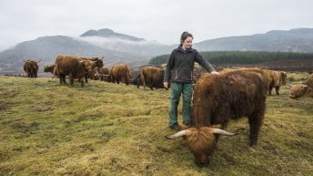Scots industry urged to back 'Meat with Integrity' campaign