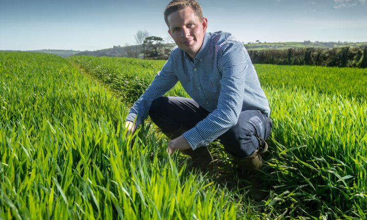 Monitor farmer makes ambitious effort to replace subsidy income