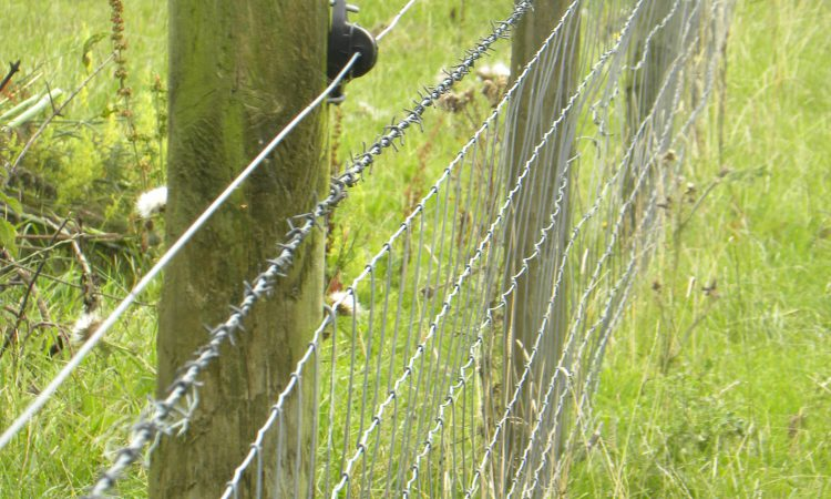 Fence post shortage causes delays to Environmental Farming Scheme