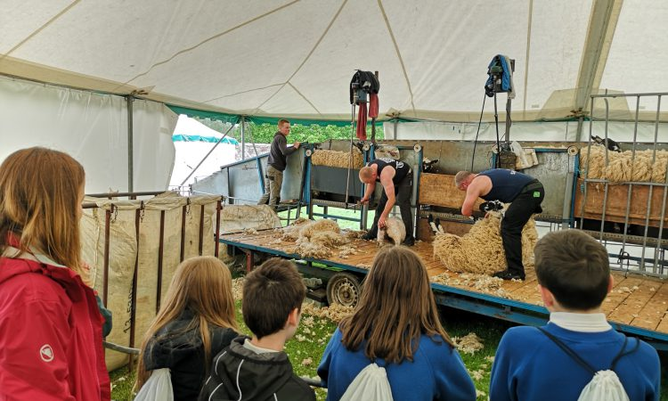 Agricultural society offers hands-on learning for more than 1,000 children