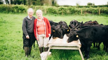M&S award recognises best of Northern Irish agriculture