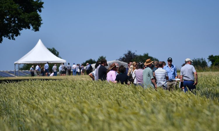 Business opportunities to top agenda at UK's largest organic farm event