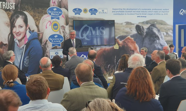 Highland Show: Ewing demands British Government equals Irish beef bail-out