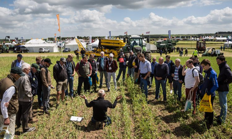 Cereals 2019: Show must go on despite torrential rain
