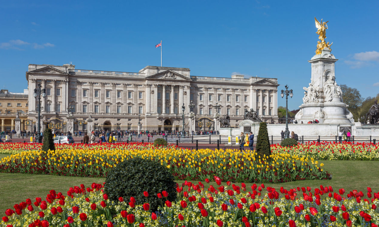 Nuffield farming scholars included in Queen's Birthday Honours List