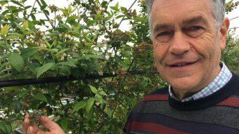 Scottish fruit farm named as third Strategic SmartHort Centre