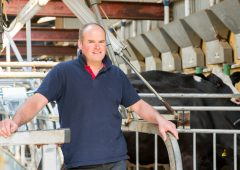 Flintshire farm announced as first Welsh strategic dairy farm