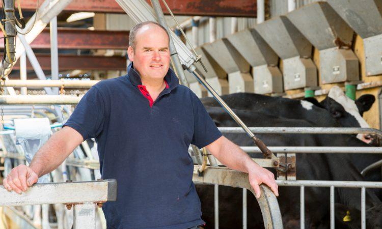Flintshire farm announced as first Welsh strategic dairy farm