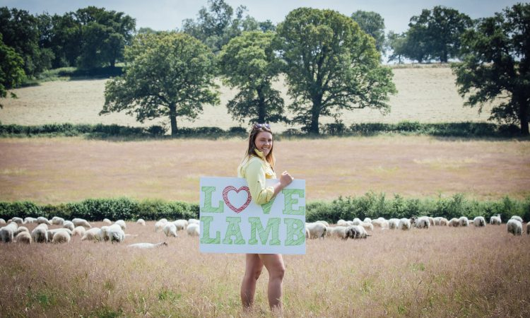 Love Lamb Week gains backing from £1.4 million campaign