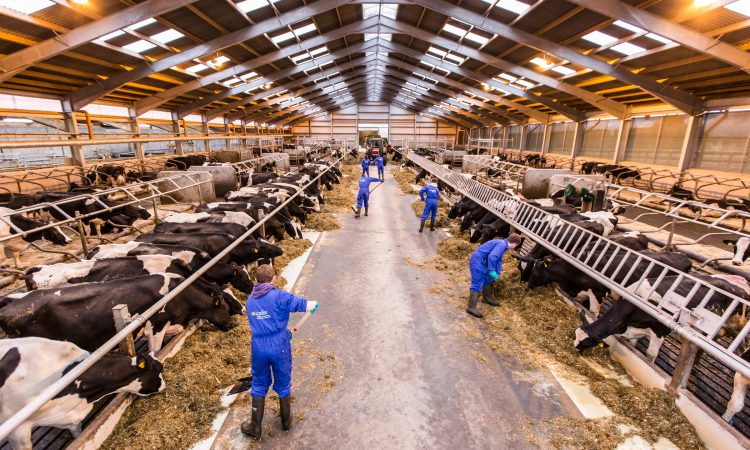 CAFRE's Agricultural Business Operations courses open for 2019 applications