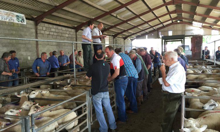 Glamorgan farmers 'left in the dark' over local mart
