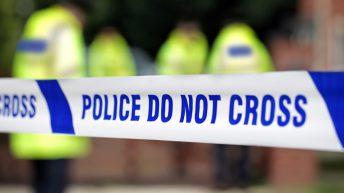 9 lambs killed in latest spate of UK lamb butchering
