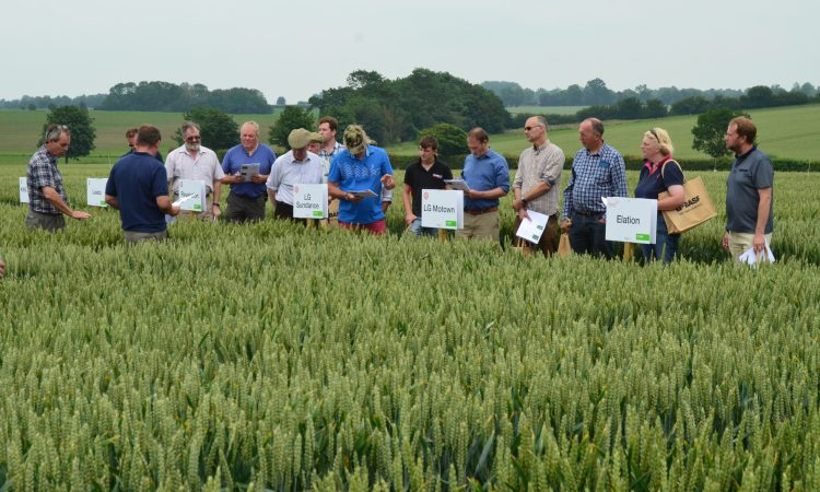 Fram Farmers' Trials Day attracts a record attendance