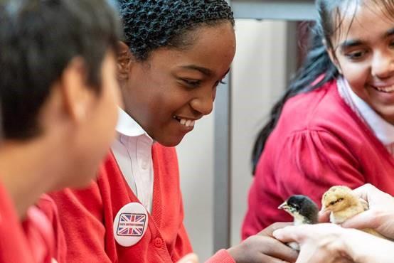 NFU transforms London school into farm