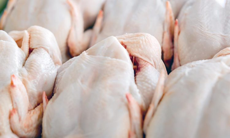 EU agrees 'whopping quota' of 180,000t of additional poultry in Mercosur deal