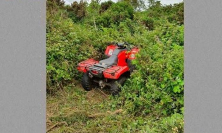 Stolen quad recovered from undergrowth hollow