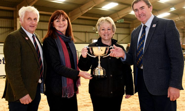 Hunt begins for 2019 Welsh dairy person of the year