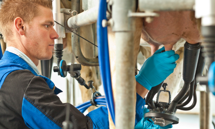 Video: New 'breed' of milking cluster launched by DeLaval