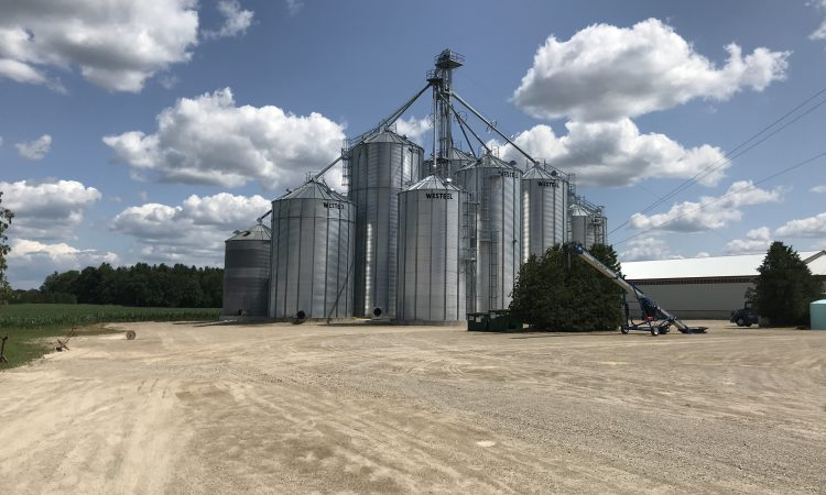 Grain price: No sign of anything to shake up markets