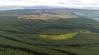 Significant timber forest with energy developing potential for sale on 5,342ac