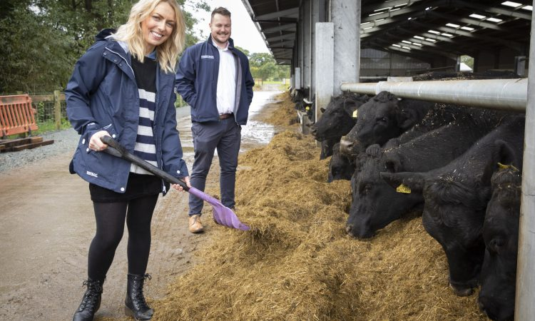 Beef deal paves way for Powys farm expansion