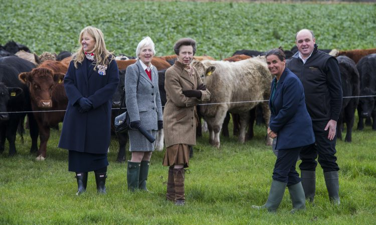 Princess Royal hears about grass-fed beef at Lanarkshire farm