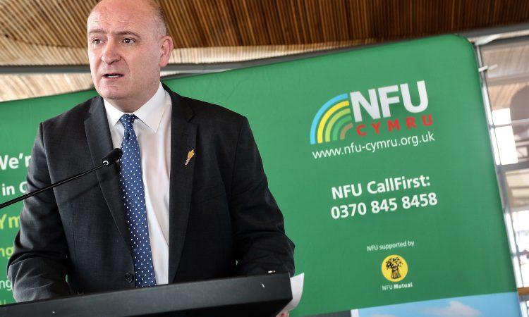 NFU Cymru seeks early BPS commitment from Minister