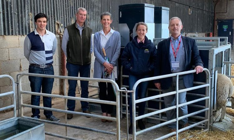 Harper Adams University unveils new sheep feeding research centre