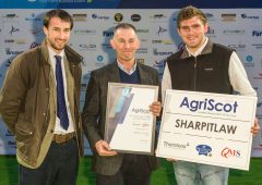 Kelso flock named Scottish Sheep Farm of the Year