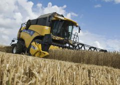 Higher wheat supplies; lower corn and oilseeds production – WASDE