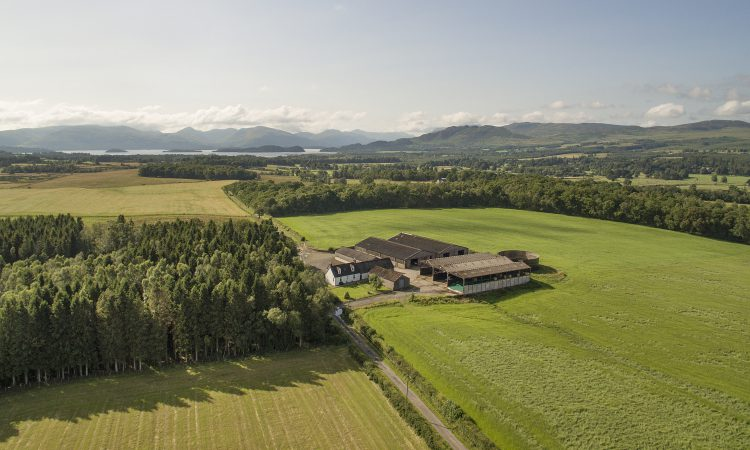 Livestock unit for sale promises productivity and scenic beauty
