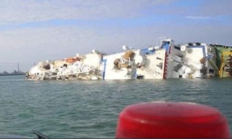 Ship carrying 14,600 sheep capsizes off Romanian coast