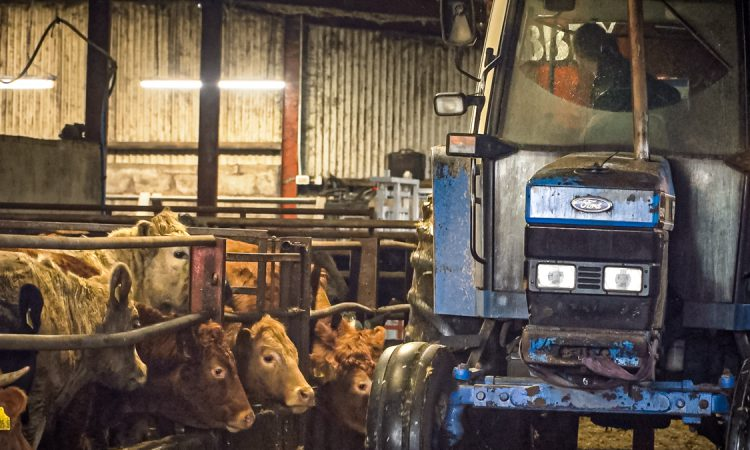 FARM SMART: Removing the paperwork on this 260-head finishing unit in Co. Derry