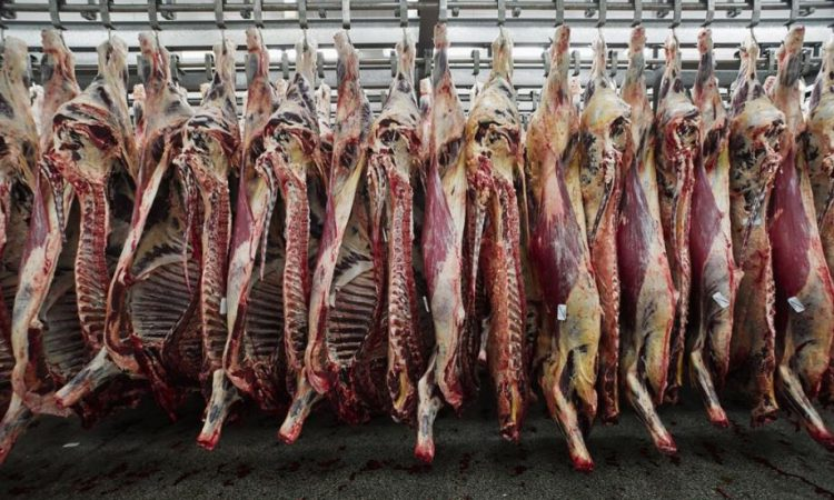 NI beef farmers encouraged to negotiate on prices