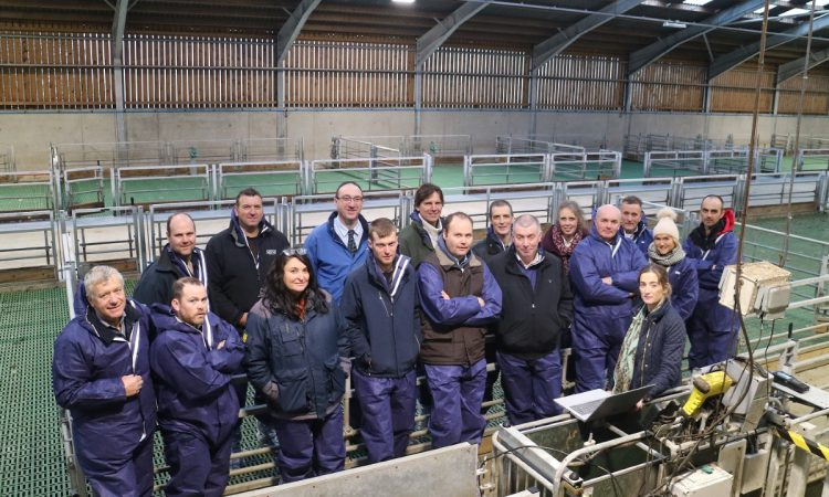 CAFRE set to hold ewe management event next month