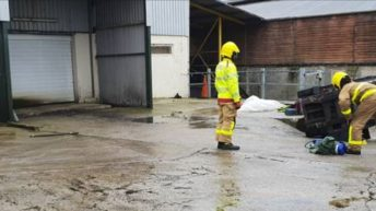 Egg farm fined £60,000 following forklift accident