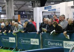 Winter Fair: Crowds flock to Northern Ireland's biggest dairy show