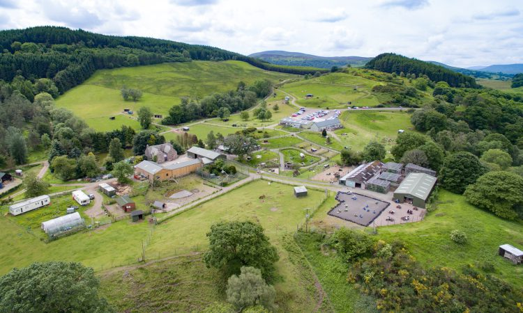 'Dream big': Wildlife park on 131ac with 'year-round trade' for sale…in Scotland