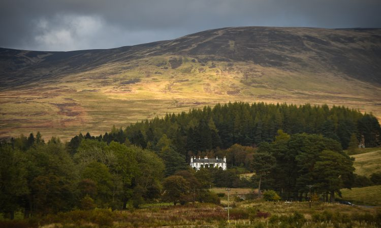 More than 80,000ac to be transformed by land managers across Scotland