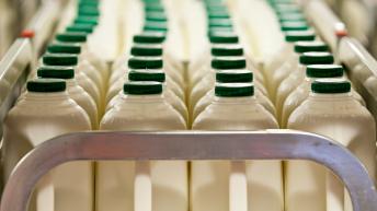 RABDF seeks Government support to prevent widespread dairy disruption